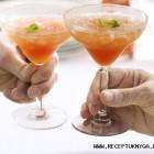 Degtinės ir spanguolių kokteilis